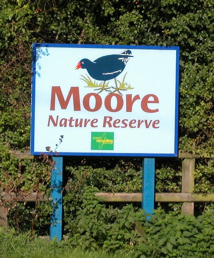 Moore Nature Reserve - picture © PFHamlyn
